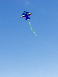 Kite flying on Green Monday